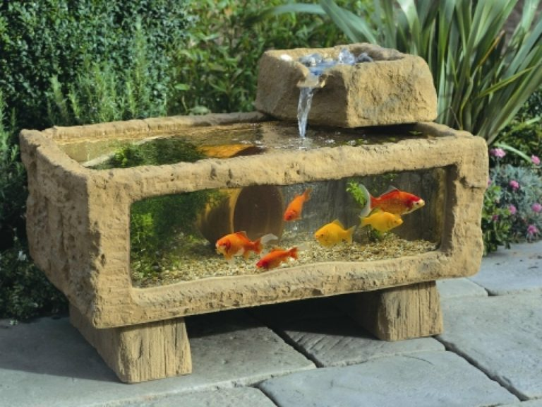 How to choose filters for indoor and outdoor aquariums