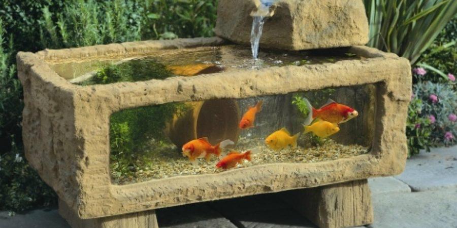 How to Choose A Outdoor Aquarium