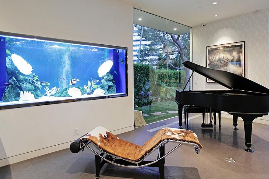How to choose filters for indoor and outdoor aquariums vespa - Aquarium wand ...