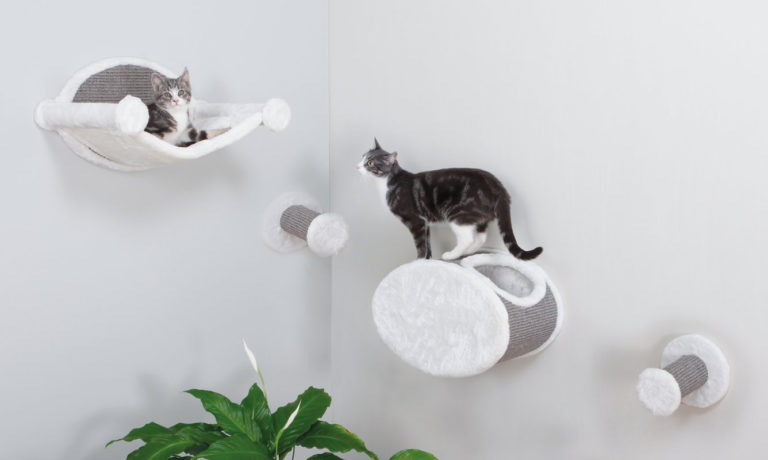 Top 10 Best Cat Beds Reviews 2018: Buying Guide