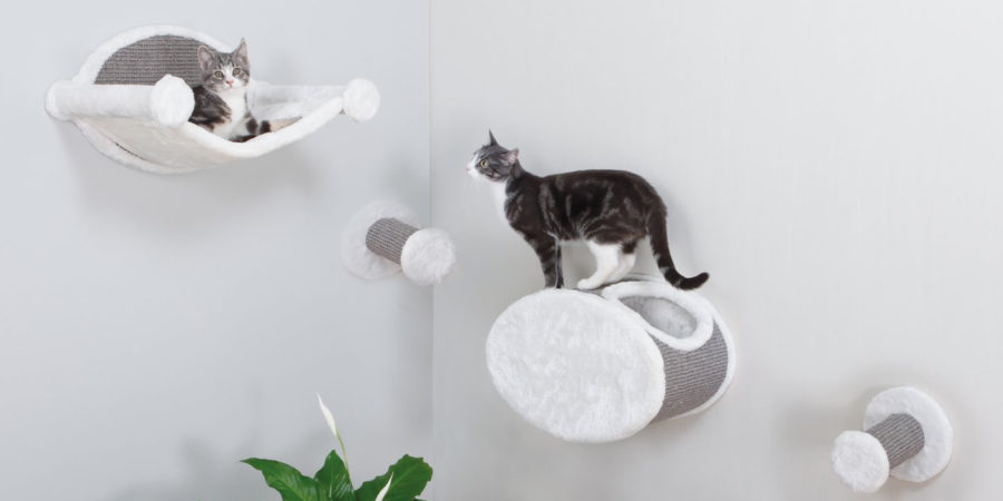 Top 10 Best Cat Beds Reviews 2018