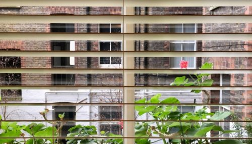A Guide to Choosing Blinds